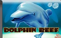 Dolphin Reef Logga