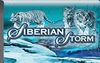 Siberian Storm Logga