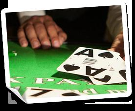 free spins på Royl Panda casino