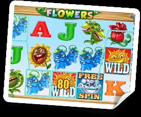 Flowers-bonus
