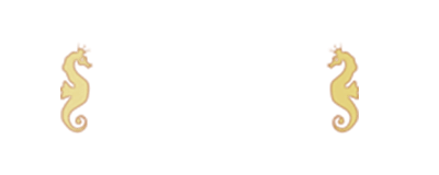 Casino Cruise loggan